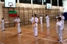 Egzamin Cup Kadetów Domaszowice  22.05.2019_2