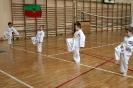 Egzamin Cup Młodzików Domaszowice  22.05.2019_6