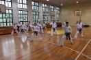 Egzamin Mistrzowski Taekwon-do Oborniki Śląskie 25.04.2015r