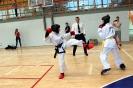 Mistrzostwa Śląska Taekwon-do Grodków 19.06.2016r