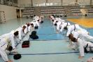 Obóz Taekwon-do Węgierska Górka lato 2016 TRENINGI