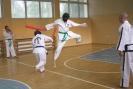 Wakacyjny Turniej Taekwon-do Grodków 30.06.2010r